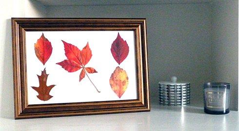 cadre-diy-automne